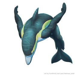 Dolphin Sketch by Triple-Torch-Art