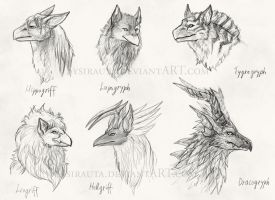 Gryphon species sketches 2017 by Sysirauta