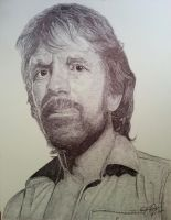 CHUCK NORRIS can kill 2 stones with one bird by OMKDrawings