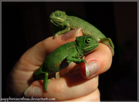 Tiny Green Babies by Sapphiresenthiss