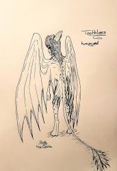 Humanized version TOOTHLESS SKETCH by moondaneka