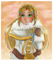 Princess Zelda- Winter Cloths by Laurence-L