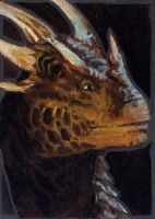 Thaxll's ACEO part 2 by grzanka