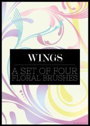 Wing Brushes by missfairytaled