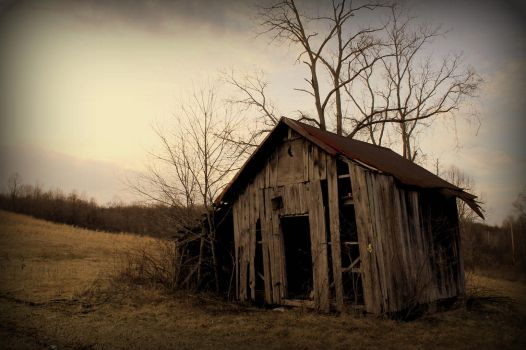 Withered and Decayed by JMcCarty09