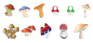 Mushroom Vector Pack by pixelworlds