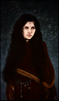 Morgaine le Fay by Seolhe