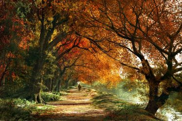 Forever Autumn by DIGITAL-DOM