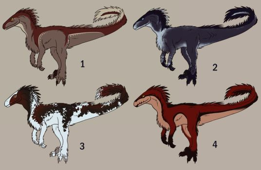 Adoptable Raptors Open by CPT-Elizaye