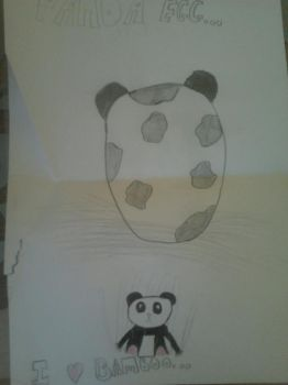 Panda egg by HarryPotteraddict16