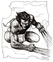Wolverine drawing by Emmanuel-B