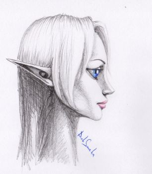 Snow Elf by Smeha