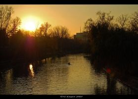 Into the sunset.. by MrDobanda by Timisoara