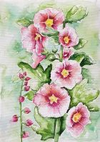 Hollyhocks by rougealizarine