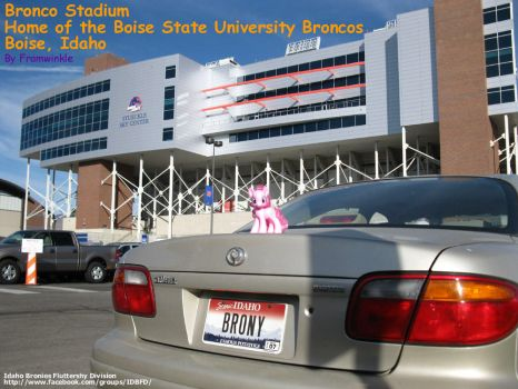 Pinkie Pie at Bronco Stadium by Framwinkle