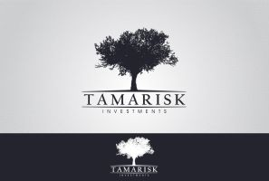 Tamarisk Investments by pixsign