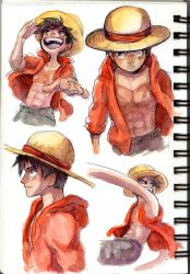 Luffy 20th by Zinfer