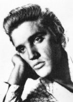 Elvis Presley Photo Mosaic by whendt