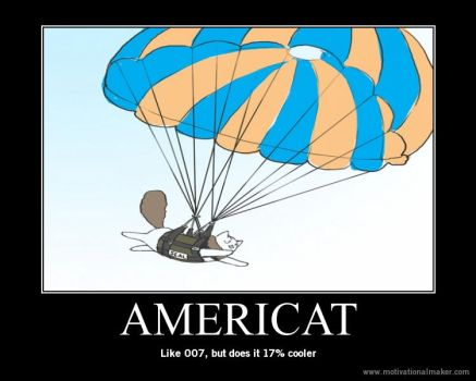 Americat by MapelHockey