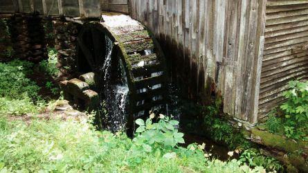 Mossy Waterwheel by Rayquazasaremysterys