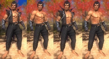 DoA5 Mod - Rig: ZWEI Barefooted by Segadordelinks