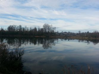inlet by Iryss--reflections