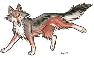 Mexican Wolf by Rabastan