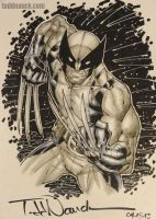 Wolverine commission Apr.2013 by ToddNauck