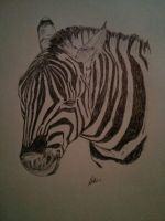 Zebre by LoiseFenollCreation