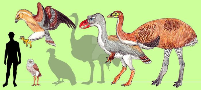 Ice Age birds by PaleoAeolos