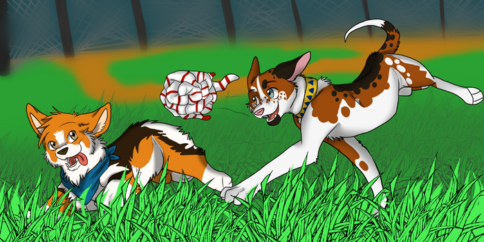 COR: Sock-Ball by Firewolf-Anime