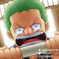 One Piece - I'll keep the promise... by SergiART