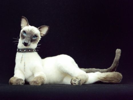 Modern siamese cat THAI by KALEideaSCOPE
