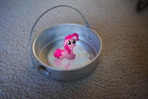 Pinkie in a Bucket (Uncaptioned) by UtterlyLudicrous
