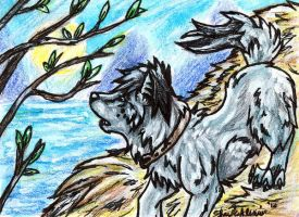 The Way Home ACEO by WhiteExterior