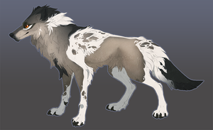 Wolf Adoptable Closed by QuillCoil