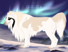 Mohan 15403 by TotemSpirit