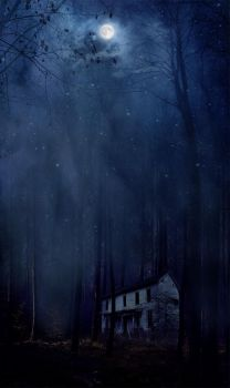 Our House by skeelar