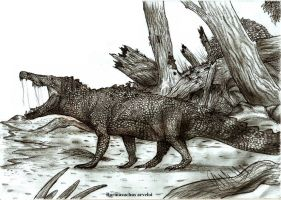 Barinasuchus arveloi by Teratophoneus