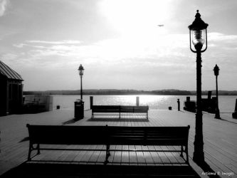 Alexandria Water Front by Arsiema