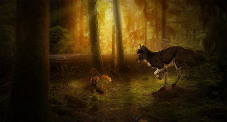 [Solved] Forest Chase... SQUIRREL! by chertan-koraki