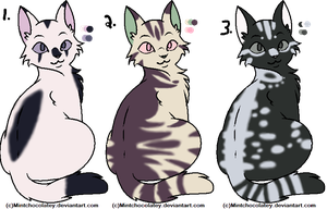 3 Cat Adopts Closed by LpsCalicoKittyCat