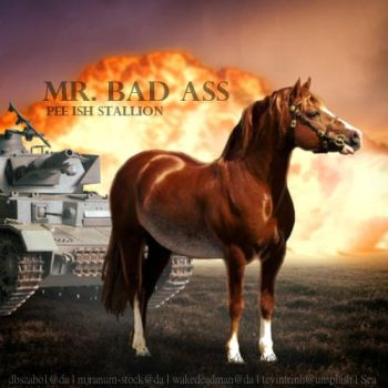 Mr Bad Ass by SeaHeartStables
