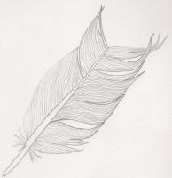 broken feather by melydia