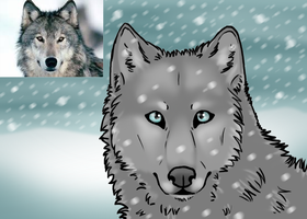 Winter Wolf by pSarahdactyls