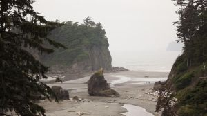 Olympic Coast by Speck2