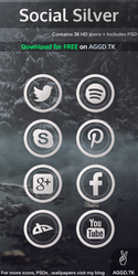 Social Silver Icon Pack + PSD by iAbel14