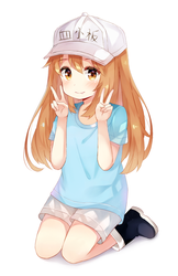 platelet by misudere