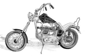 Mick's Triumph by andyplfc