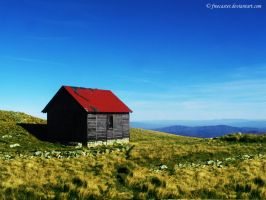 Old house on the top. by Freecaster